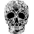Crystal Skull Infrared by ANTHROPOLESLEY