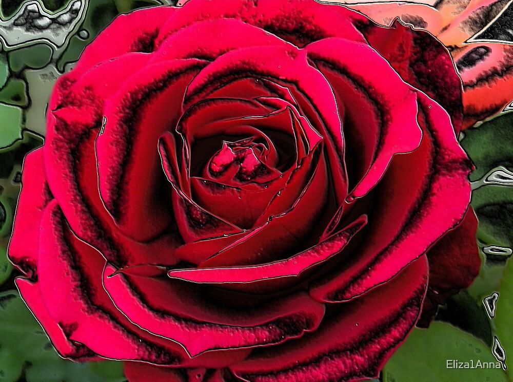 Rose  by Eliza1Anna