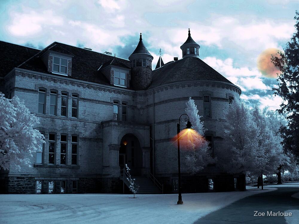 Halls of Learning by Zoe Marlowe