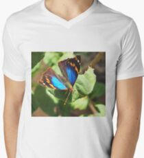 small butterfly with dark wings, bright blue and orange pattern Men's V-Neck T-Shirt