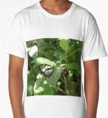 glasswing butterfly Long T-Shirt