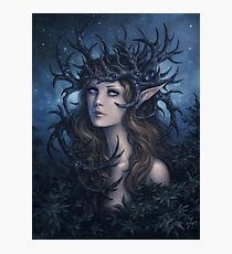 Horned crown Photographic Print