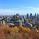 Montreal by Elfriede Fulda