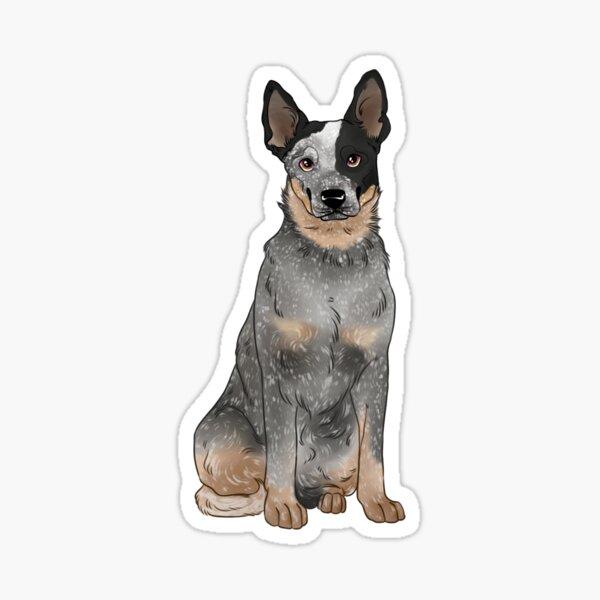 Blue Australian Cattle Dog Sticker
