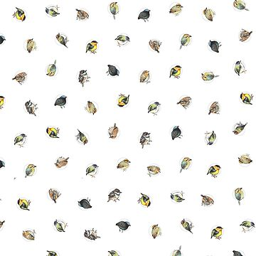 Round birds of Costa Rica polka dot by E-M-Wood