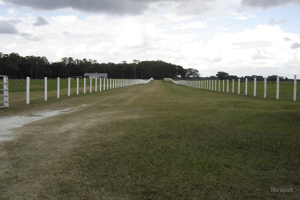 Perfect Fence Posts to the Ranch by librapat