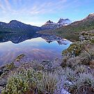 Dawn, Cradle Mountain by Harry Oldmeadow