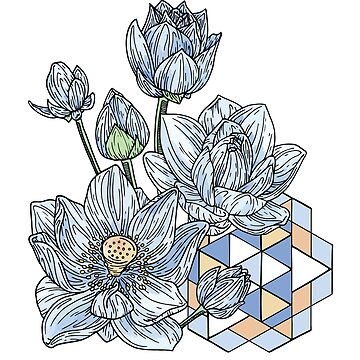 Geometric Nature - Floral Illustration by bblane