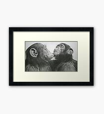Cheeky Chimps Framed Print