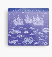 Natural History II in Blue | CreateArtHistory Metal Print