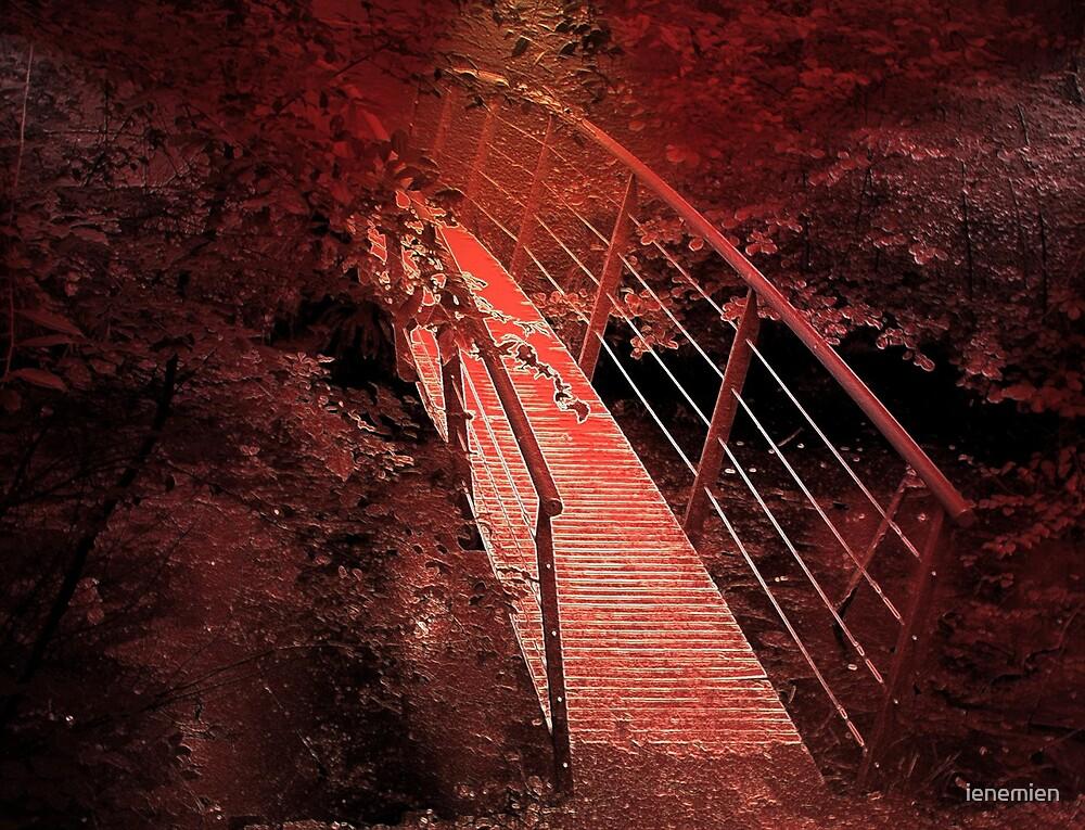 A bridge made of color by ienemien