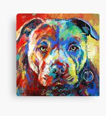 Stafforshire Bull Terrier Canvas Print
