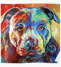 Stafforshire Bull Terrier Poster