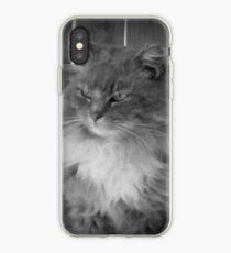 Fabulous Feline iPhone Case