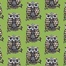 Hoot Owl by Rosemary  Scott - Redrockit