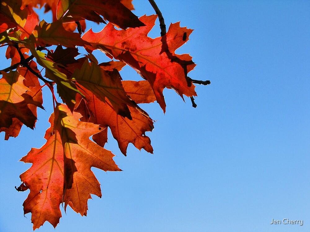 Fall's Glory by Jen Millard