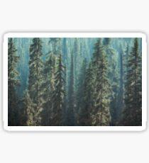 Green Misty Forest  Sticker