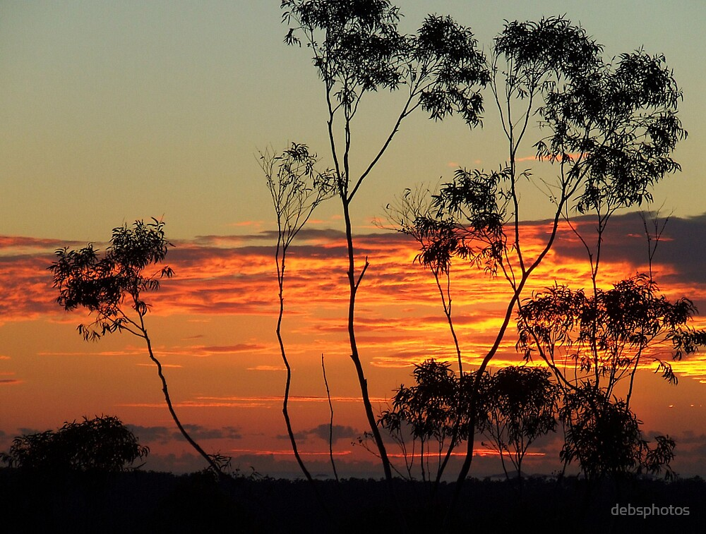 """""""Colours of Dawn"""" by debsphotos"""