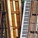 The Secret Keyboard Graveyard by Steven Godfrey