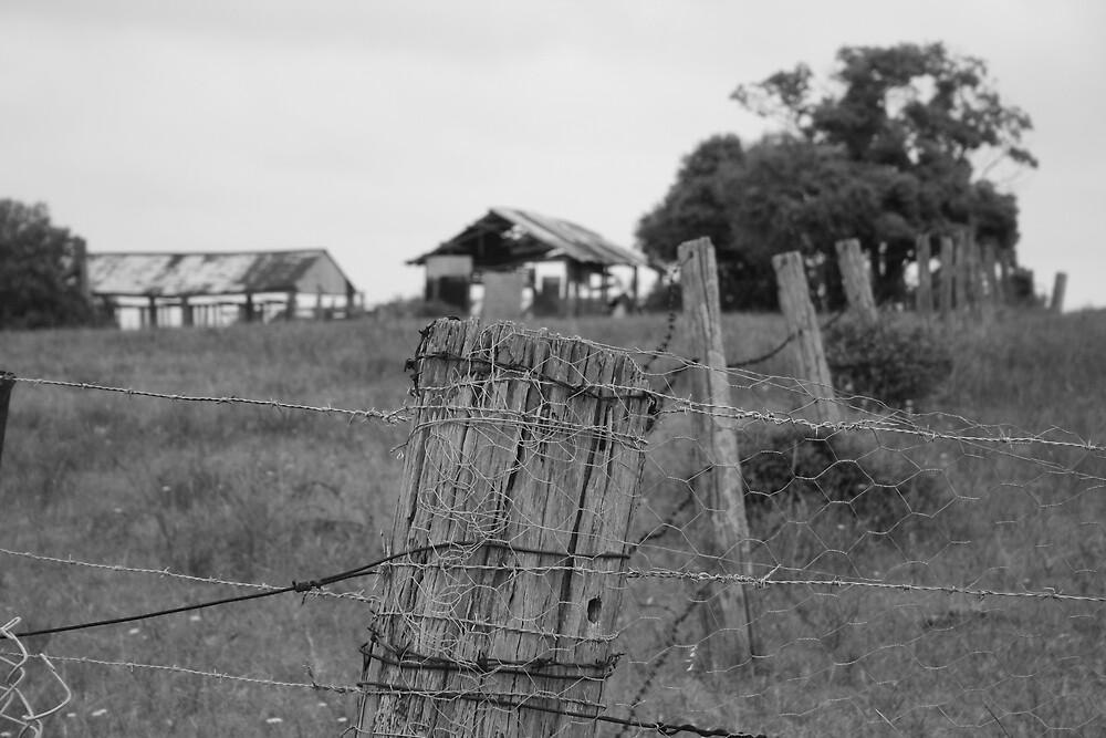 old fence by photosbyjase