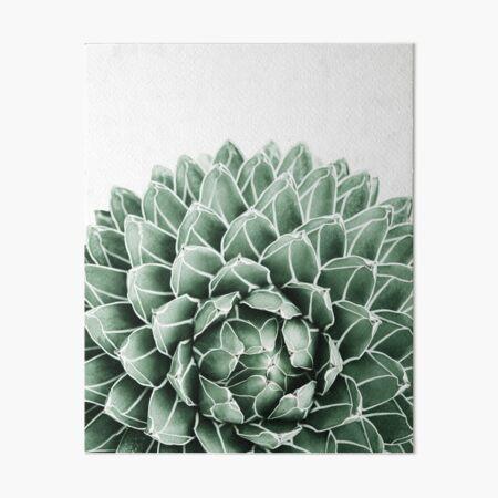 Succulent splendour Art Board Print