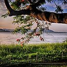 Sunset Evening by Sagar Lahiri