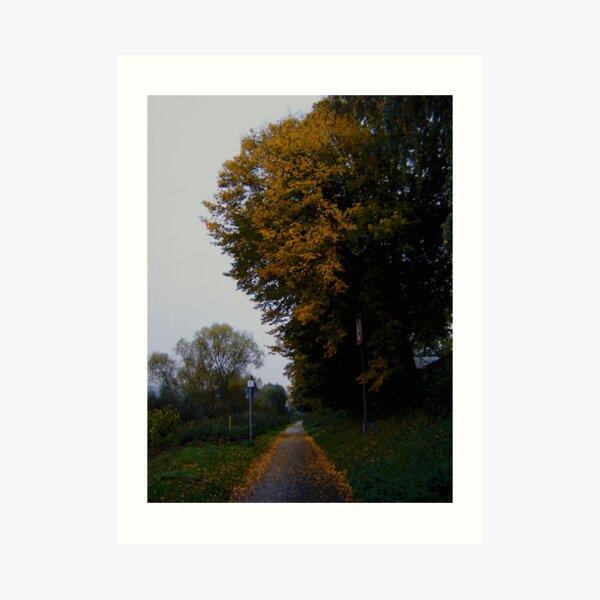 A walk in the Fall Art Print