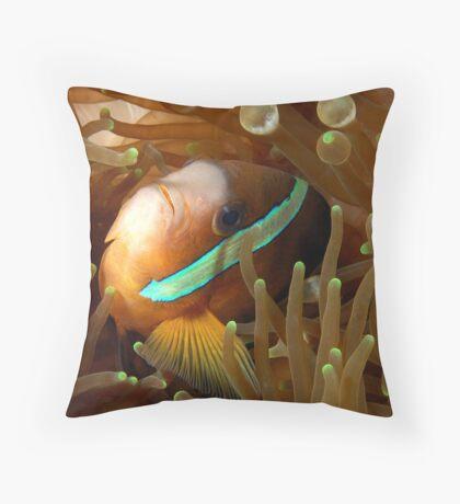 Clarkes Anemonefish Throw Pillow