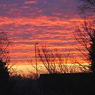 Sunrise by KatieBird