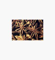 Star Anise Texture Art Board