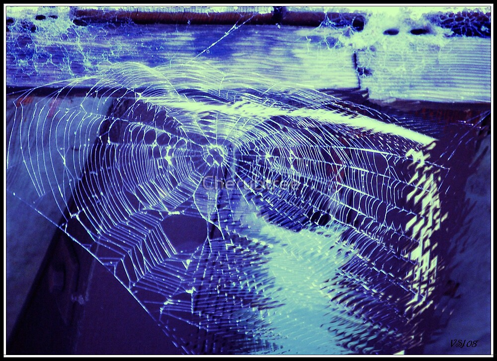 Ghostly Web 4 by Cherubtree