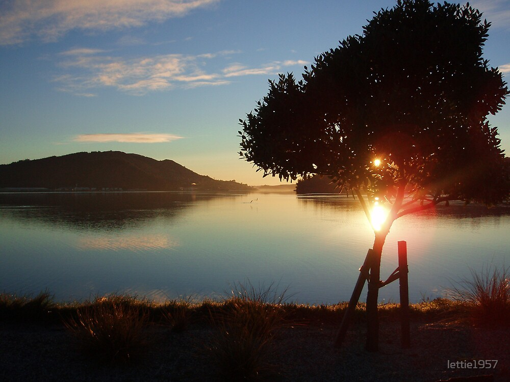 Sunrise over Otago Harbour -  by lettie1957
