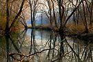 Smoky Reflection by NatureGreeting Cards ©ccwri