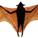 Fruit Bat by cadva