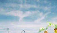 Angels on high! by Angel4u