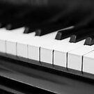 piano by Falko Follert