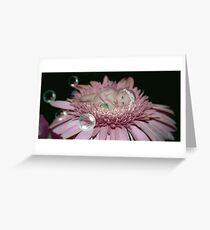 Midnight Blossom Greeting Card