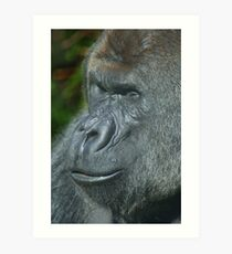 Portrait of a Gorilla Art Print