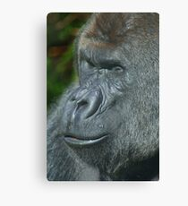 Portrait of a Gorilla Canvas Print