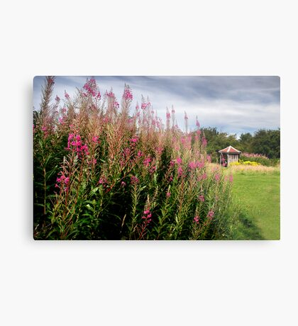 Summer WAS here - Old Winchester Hill, Hampshire Metal Print
