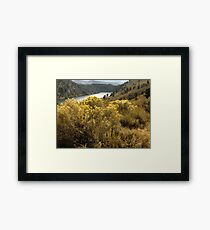 Colorful Colorado Canyon Brush Framed Print