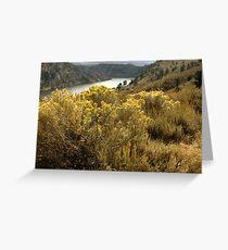 Colorful Colorado Canyon Brush Greeting Card