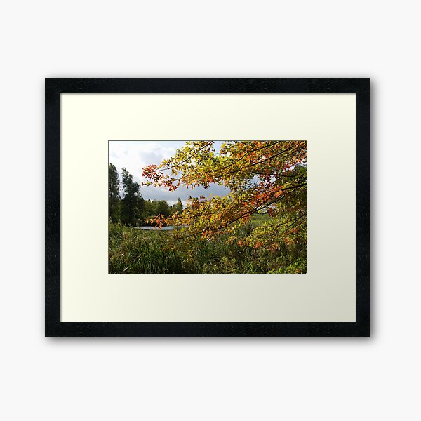 Autumn is coming Framed Art Print