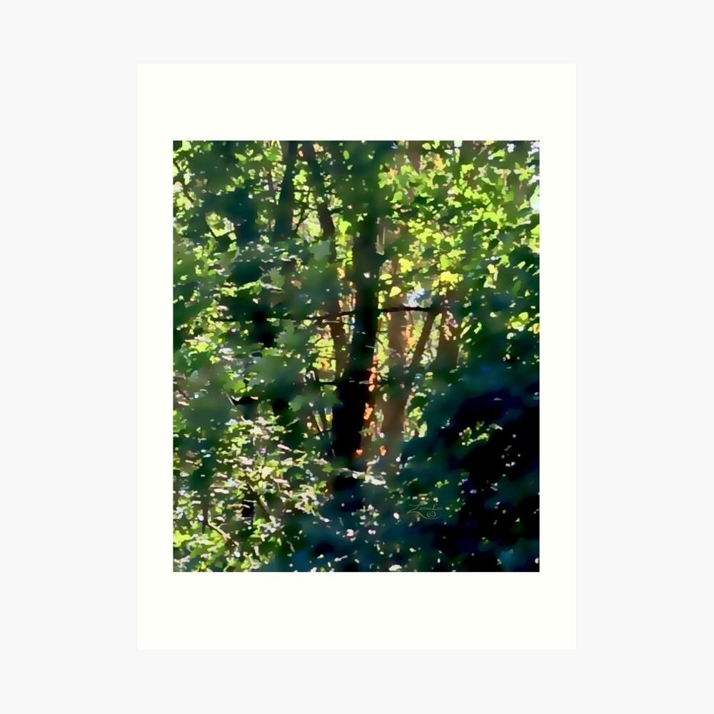 Woodland Dream Art Print