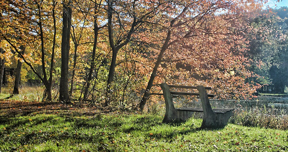 The Bench by GPMPhotography