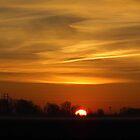Morning On The Prairie by WildestArt
