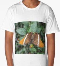 close-up of an orange-brown butterfly Long T-Shirt