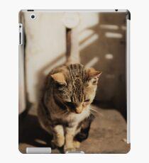Mia the cat III iPad-Hülle & Skin