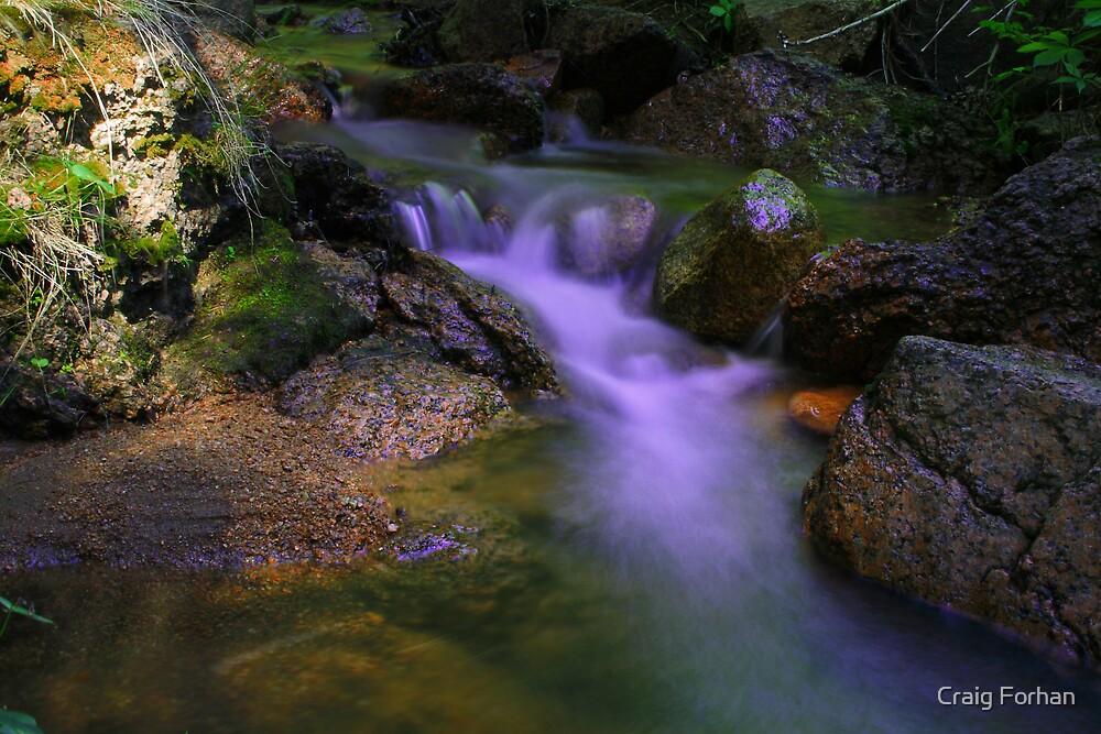 Creek Side by Craig Forhan