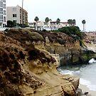 Cliffs of La Jolla by Jan  Wall